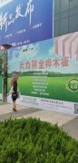 Consmos attended the 10th Linyi Woodshow for PLYNOVO full birch ply
